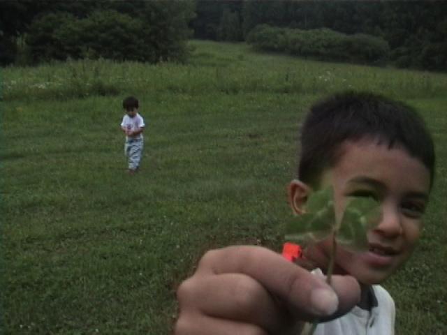 Aidan's clover